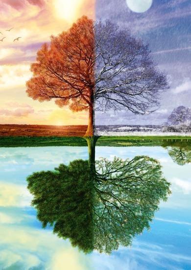 eng_pl_pq-puzzle-500-el-jedno-drzewo-cztery-pory-roku-3183_1